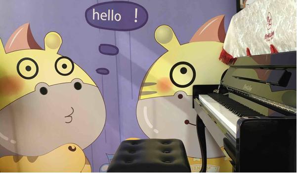 0元学钢琴 价值880元高端精品课程一对一钢琴课四节 !