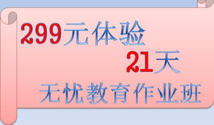 299体验21天作业班