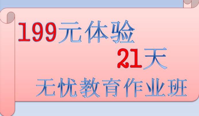 199元21天作业班体验