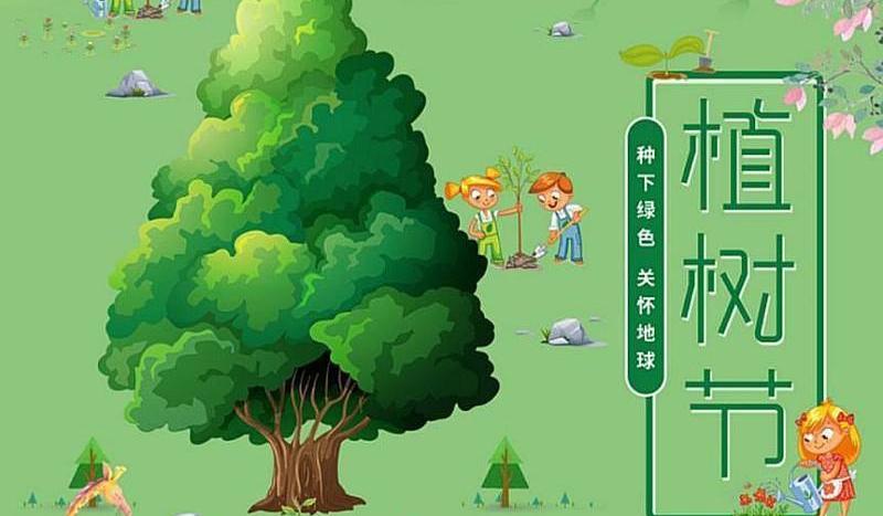 3月9日周六带孩子来参加晨光贝尔国际教育植树活动