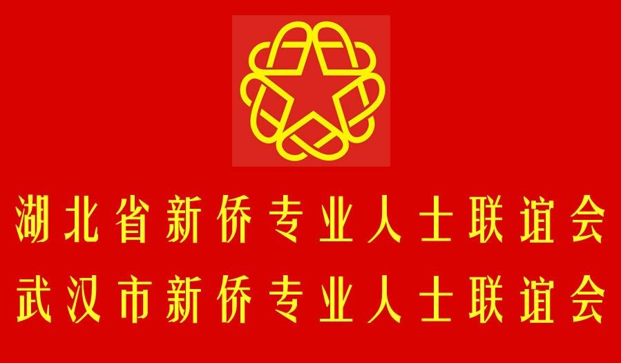 湖北省暨武汉市新侨专业人士联谊会理事申请表