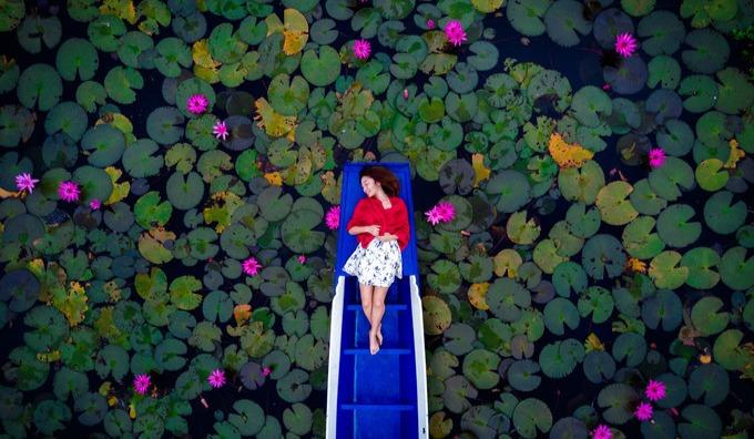 从清迈到曼谷,邂逅红莲花海,漫游冬日泰国