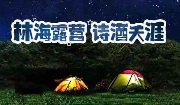 [免费两日游—林海露营 诗酒天涯]趣游黄海海滨国家森林公园——生态露营之旅