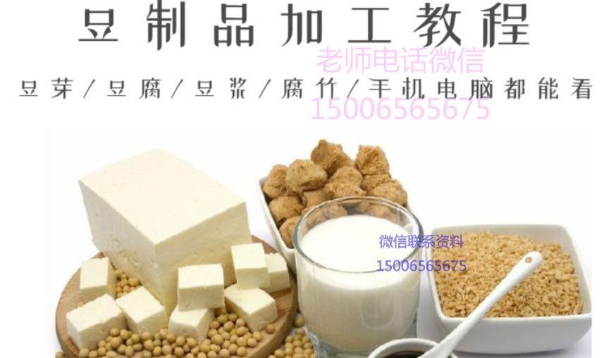 豆制品加工技术 资料视频教程 豆芽 豆腐 豆浆 腐竹卤豆干配方生产培训班