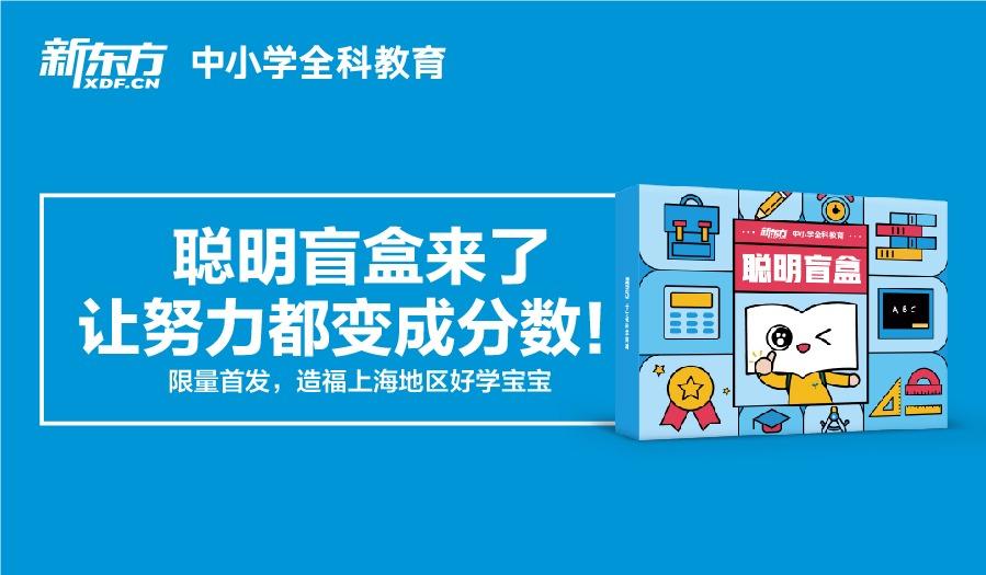 限时免费 聪明盲盒来啦,造福上海地区好学宝宝!(送线下1V1测评诊断)